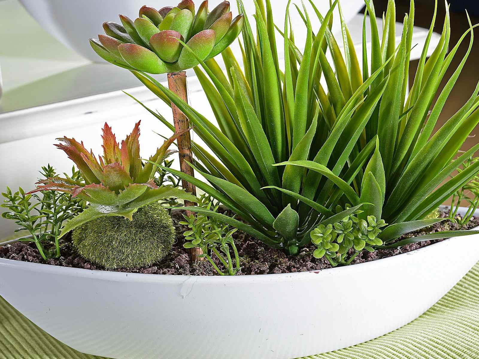 Composizione Di Piante Grasse Artificiali In Vaso Di Resina 54 33