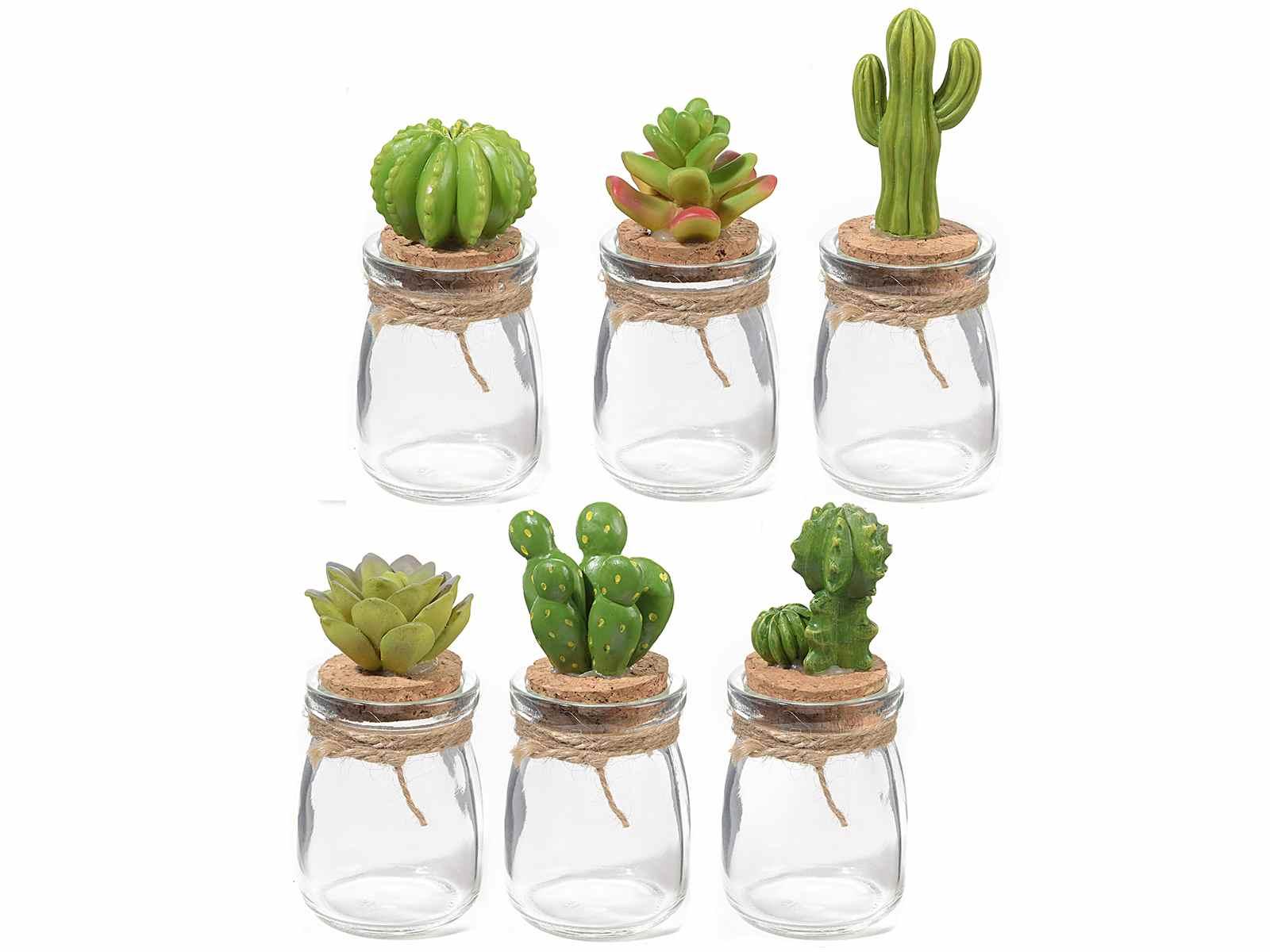 Barattolino in vetro c tappo sughero e decoro pianta grassa art from italy - Mobiletti in vetro ...