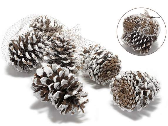 Confection of 6 snowy fir cones for Christmas decorations